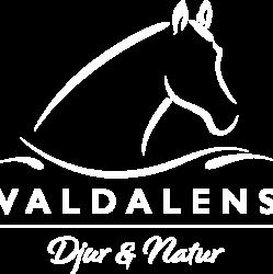 Valdalens djur & natur